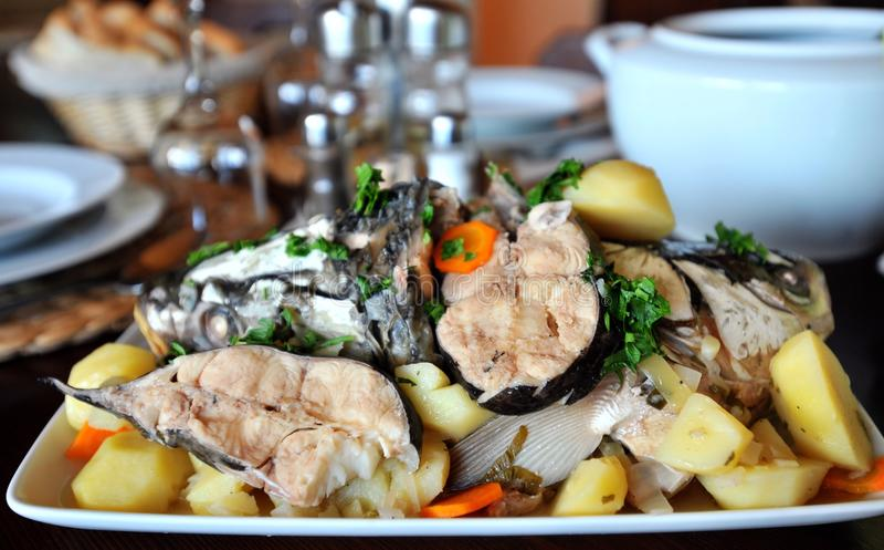 Maträtt med kokt fiskkött fotografering för bildbyråer