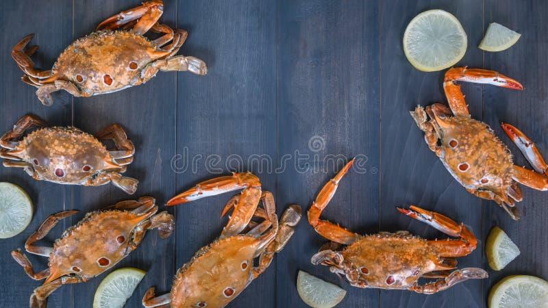 Matram med skaldjur royaltyfri fotografi