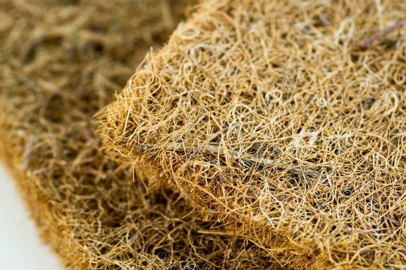 Matratze mit Coir Kokosnusscoir Kokosraspeloberteil für die Produktion von Matratzen Beschaffenheit, natürlicher Hintergrund stockfoto