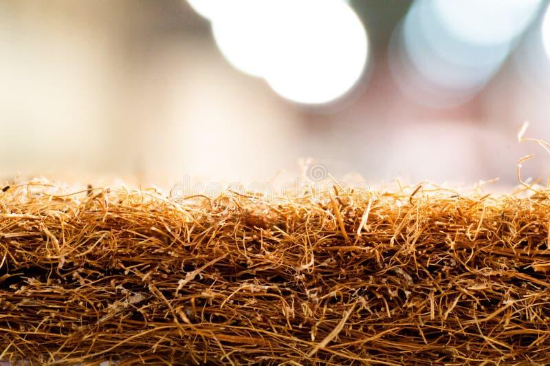 Matratze mit Coir Kokosnusscoir Kokosraspeloberteil für die Produktion von Matratzen Beschaffenheit, natürlicher Hintergrund stockbilder