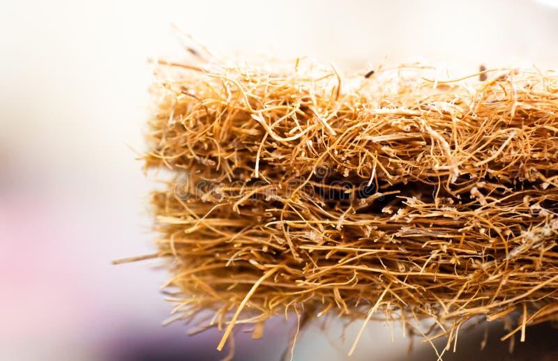 Matratze mit Coir Kokosnusscoir Kokosraspeloberteil für die Produktion von Matratzen Beschaffenheit, natürlicher Hintergrund lizenzfreie stockfotos