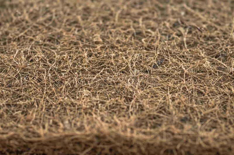 Matratze mit Coir Kokosnusscoir Kokosraspeloberteil für die Produktion von Matratzen Beschaffenheit, natürlicher Hintergrund lizenzfreies stockbild