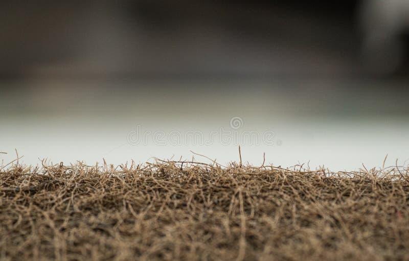 Matratze mit Coir Kokosnusscoir Kokosraspeloberteil für die Produktion von Matratzen Beschaffenheit, natürlicher Hintergrund lizenzfreies stockfoto