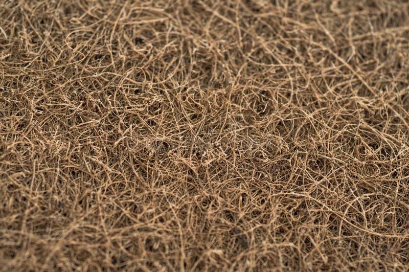 Matratze mit Coir Kokosnusscoir Kokosraspeloberteil für die Produktion von Matratzen Beschaffenheit, natürlicher Hintergrund stockfotografie