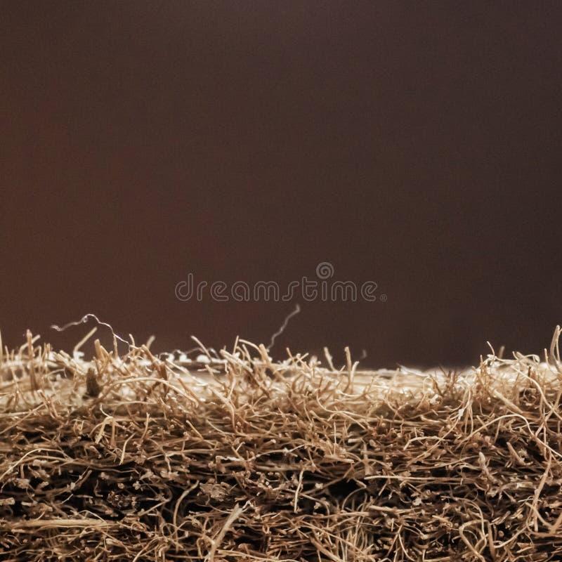 Matratze mit Coir Kokosnusscoir Kokosraspeloberteil für die Produktion von Matratzen Beschaffenheit, natürlicher Hintergrund lizenzfreie stockfotografie