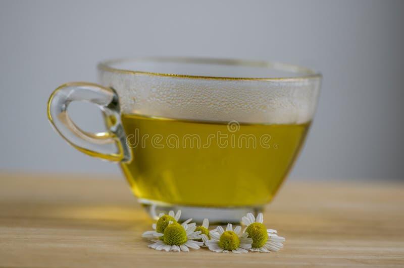 Matricaria chamomilla Blumen und trasparent Tasse Tee auf Holztisch, Kräutermedizin neuen Blühens lizenzfreies stockbild
