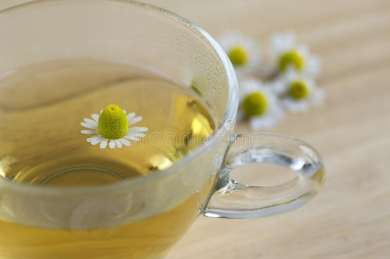 Matricaria chamomilla flowers and trasparent cup of tea on wooden table, fresh flowering herbal medicine stock images