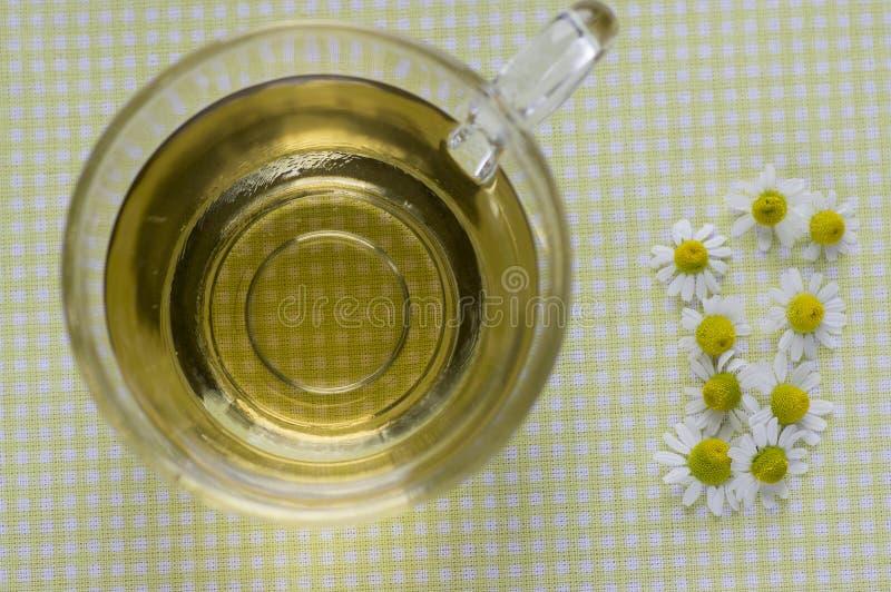 Matricaria chamomilla weiße Blumen mit gelber Mitte, trasparent Tasse Tee auf Tischdecke, Kräutermedizin neuen Blühens stockfotos