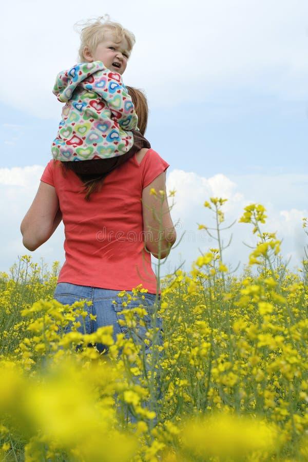 Matriz com criança em um campo amarelo imagens de stock