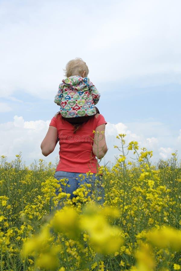 Matriz com criança em um campo amarelo foto de stock