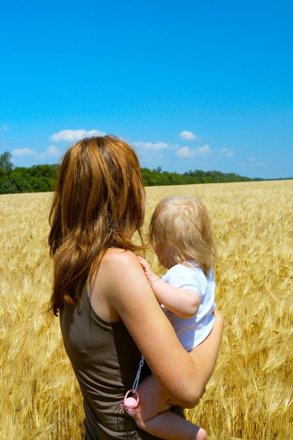 Matriz com a criança no campo de trigo fotografia de stock royalty free