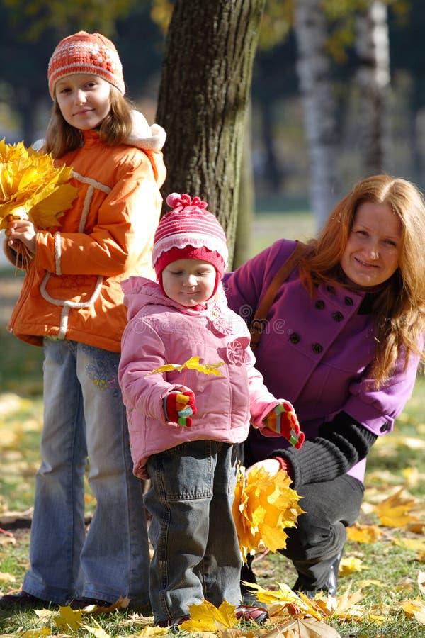 Download Matriz com filhas imagem de stock. Imagem de alegria - 16861687