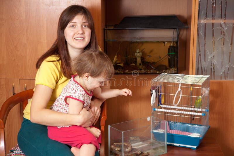 Matriz e filha com animais de estimação fotos de stock