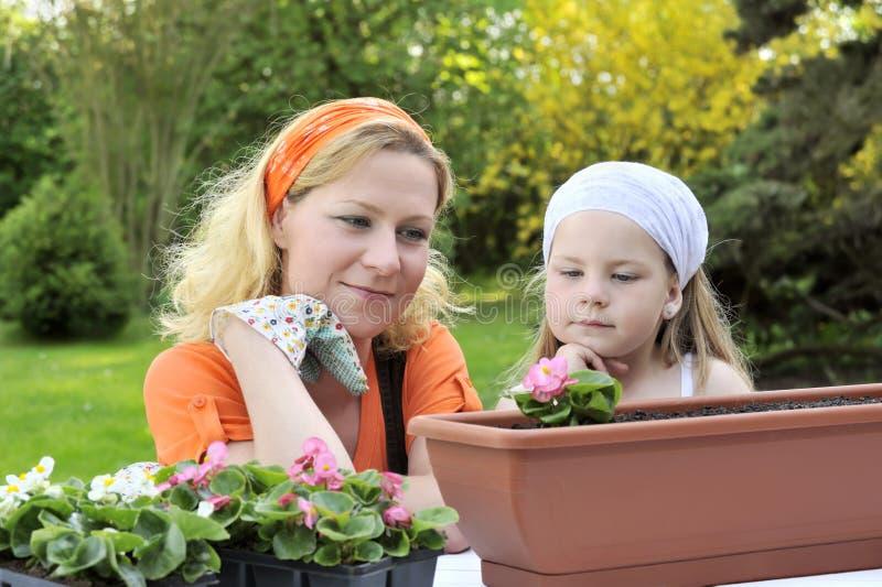 Matriz e filha que têm o tempo de jardinagem fotos de stock