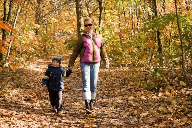 Matriz e filho na floresta do outono imagens de stock
