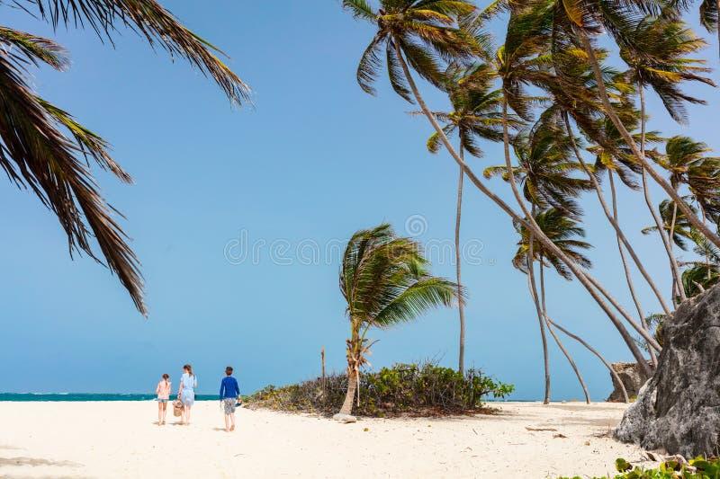 Matriz e miúdos na praia foto de stock