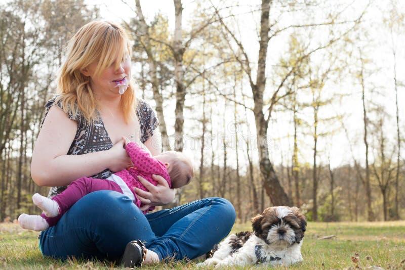 A matriz está alimentando seu bebê foto de stock