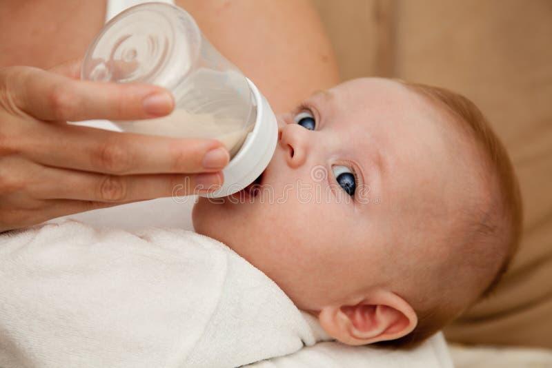 Matriz que alimenta o filho recém-nascido fotos de stock