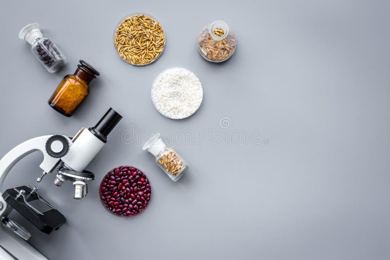 Matsäkerhet Vete, ris och röda bönor nära mikroskopet på grå copyspace för bästa sikt för bakgrund arkivbilder