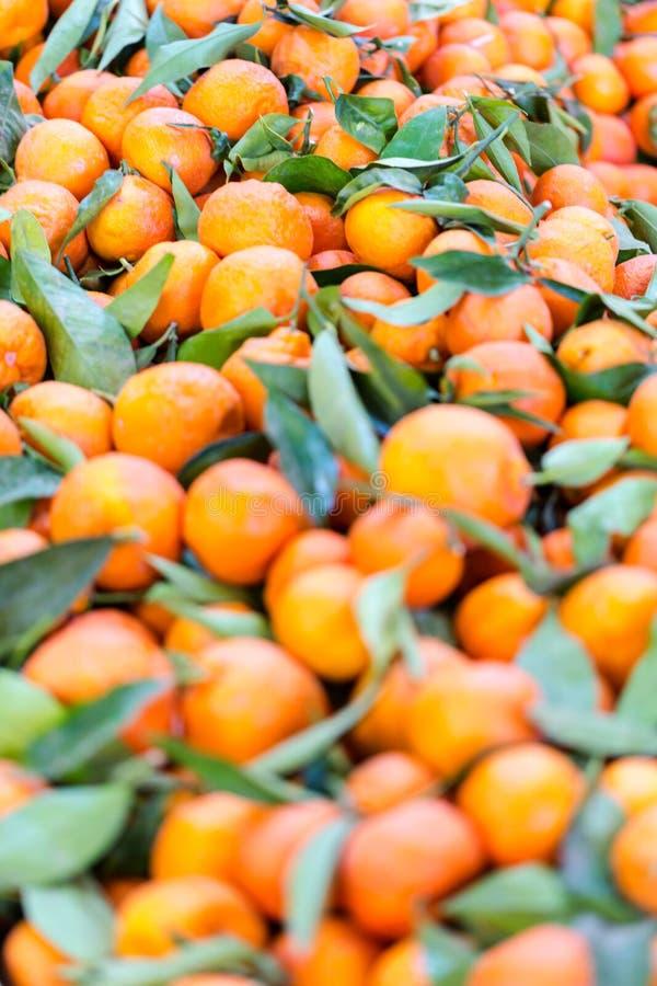 Matstånd mycket av nya mandarines med gröna sidor royaltyfria bilder