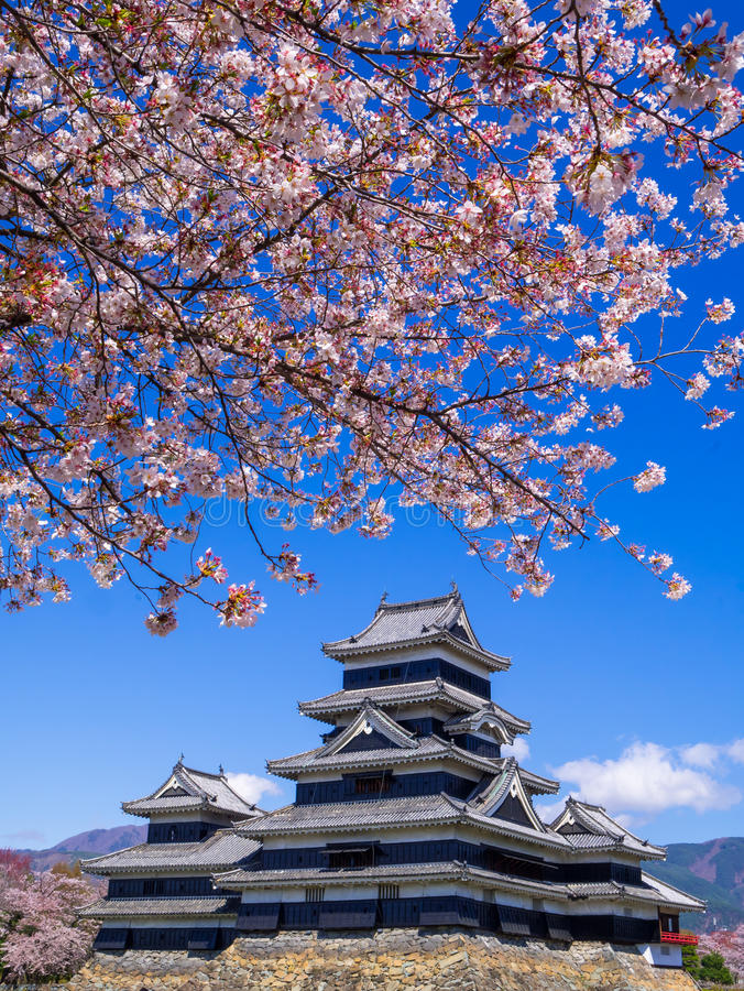 Matsumoto castle in spring season, Nagano, Japan stock photography