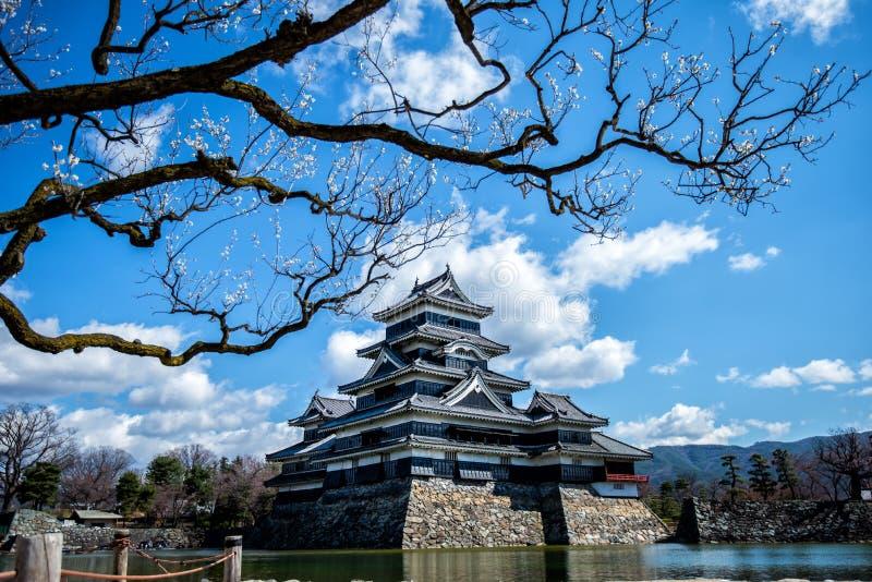 Matsumoto kasztel, Nagano, Japonia obraz stock
