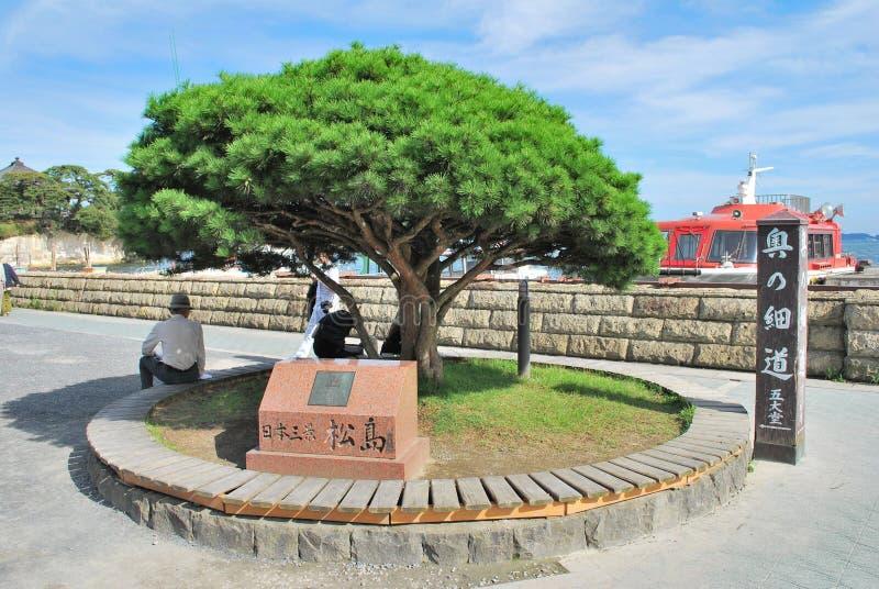 matsushima ορόσημων της Ιαπωνίας στοκ εικόνα με δικαίωμα ελεύθερης χρήσης
