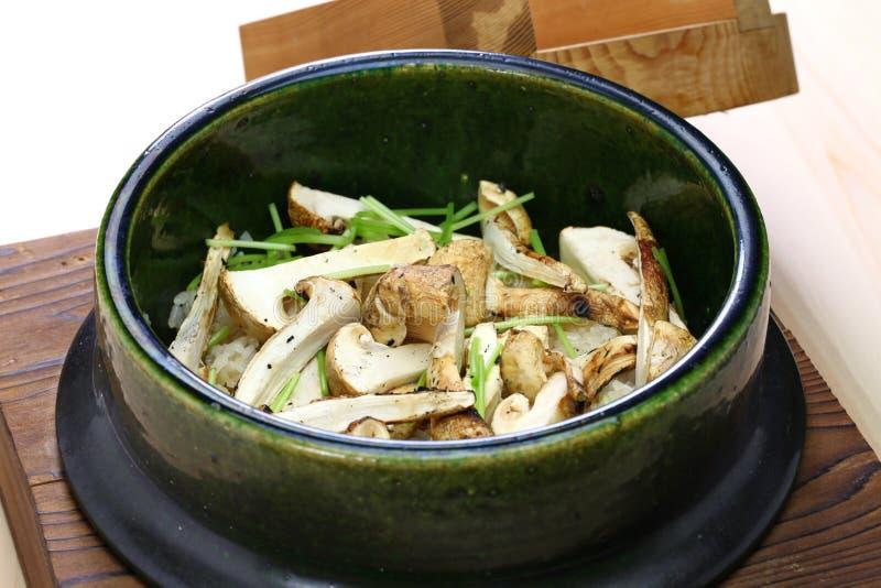Matsutake gohan, alimento japonês fotos de stock royalty free