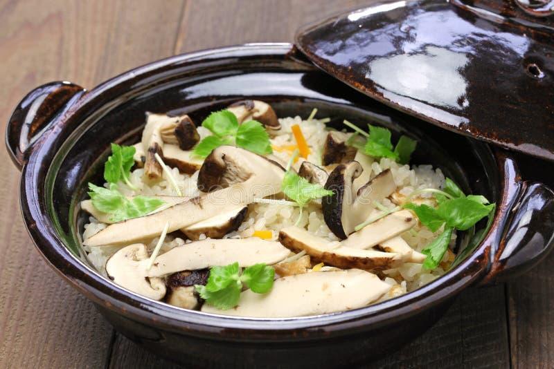 Matsutake gohan, arroz cozinhou com cogumelo do matsutake fotografia de stock