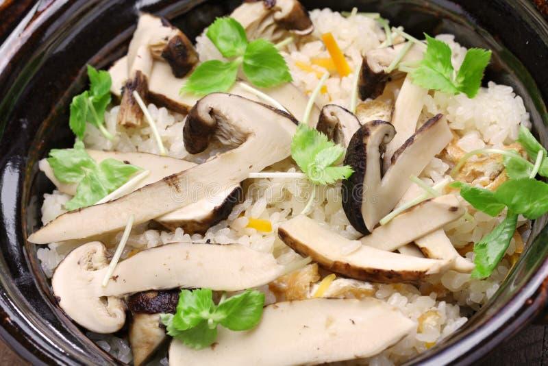 Matsutake gohan, arroz cozinhou com cogumelo do matsutake foto de stock