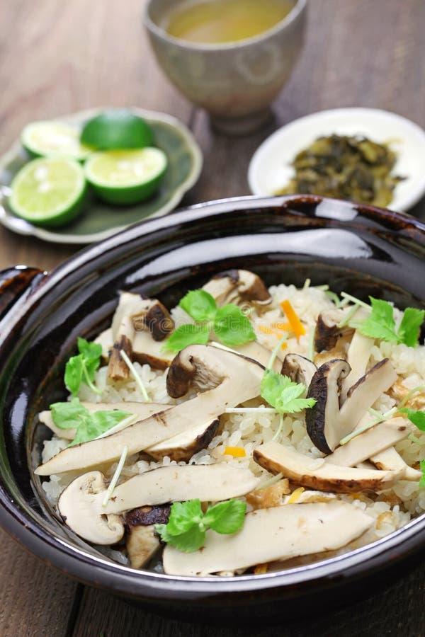 Matsutake gohan, arroz cozinhou com cogumelo do matsutake foto de stock royalty free