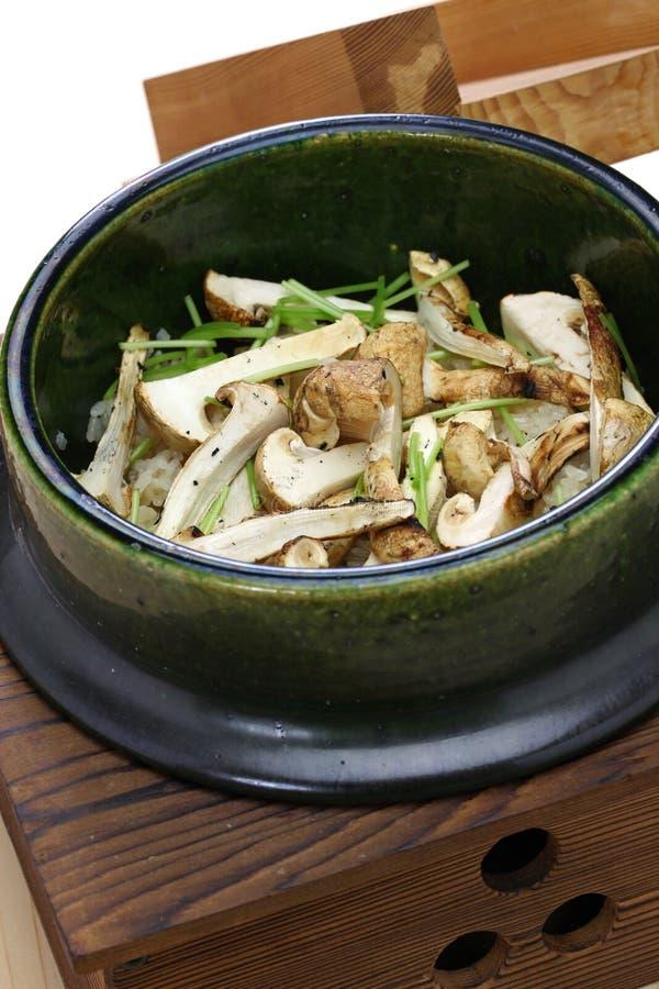 Matsutake japonês gohan, arroz cozinhado com cogumelo do matsutake fotografia de stock royalty free