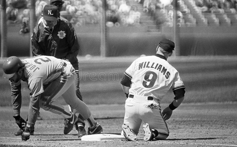 Matt Williams. San Francisco Giants 3B Matt Williams is waiting on the call from the 3B umpire after he tags out Howard Johnson of the NY Mets. Image taken from stock photography
