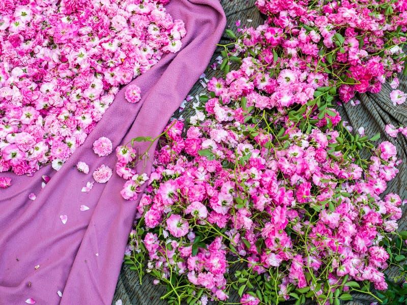 Matta av blommor royaltyfria foton