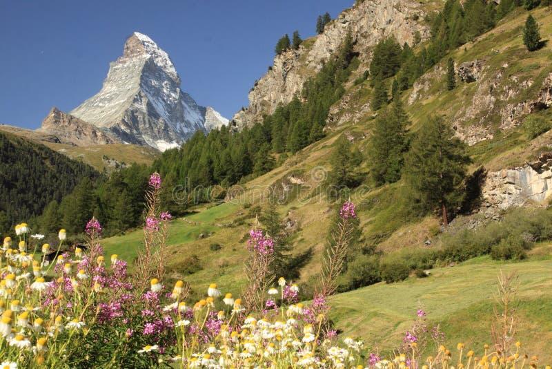 Matterhorn images stock