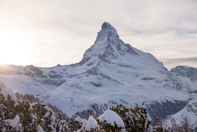 Matterhorn solnedgång royaltyfri fotografi