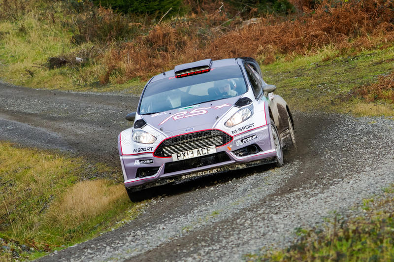 Matthew Wilson - Ford Fiesta R5 photographie stock
