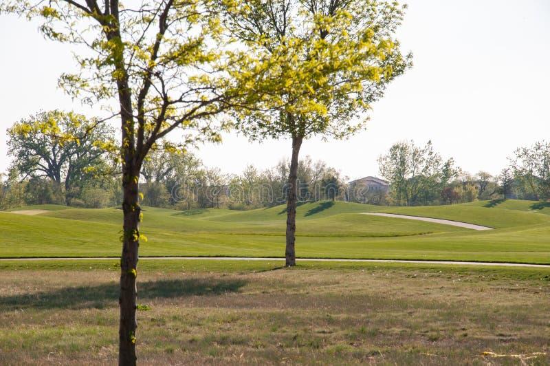 Mattina al campo da golf nell'aria fresca di autunno fotografia stock libera da diritti