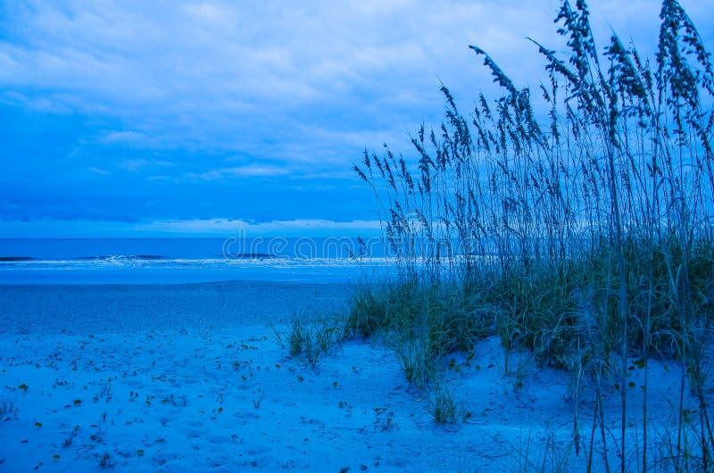 Mattina blu su Amelia Island immagine stock