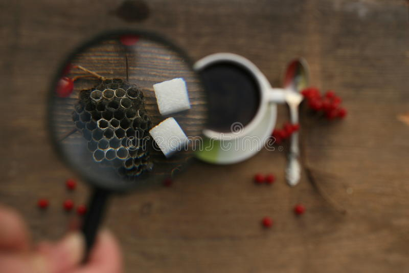 Mattina del caffè con le bacche fotografia stock