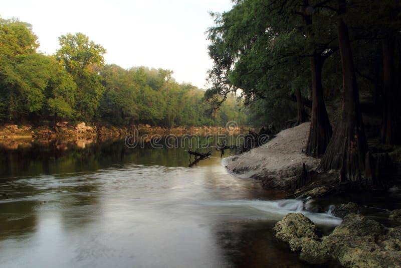 Mattina del fiume di Suwannee immagini stock