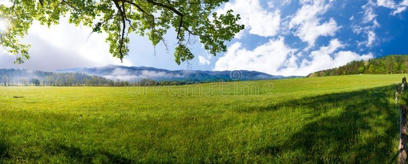 Mattina della primavera in baia Cade, TN fotografia stock libera da diritti