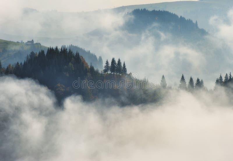 Mattina di autunno Alba nebbiosa nelle montagne carpatiche immagine stock