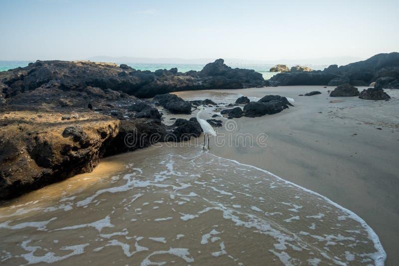 Mattina di estate alla spiaggia di Punta Negra fotografie stock libere da diritti