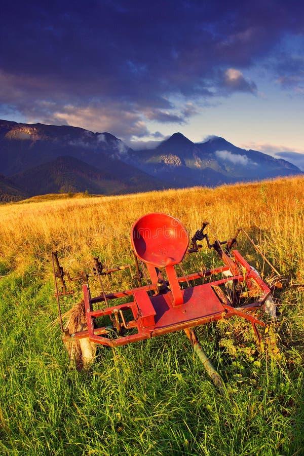 Mattina di estate in alto Tatras (Vysoké Tatry) immagini stock