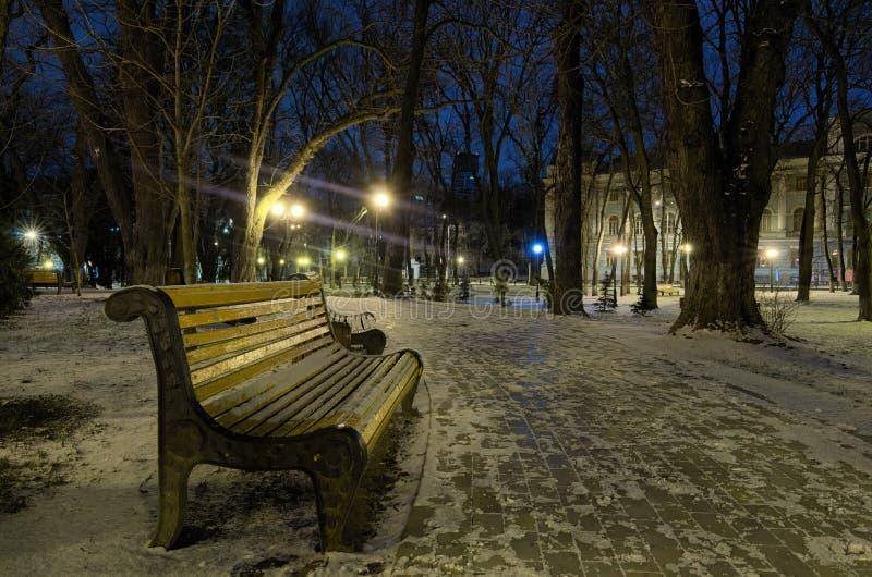 Mattina di inverno nel parco di Mariinsky Camminando nel parco di inverno lungo il vicolo curvo vuoto con i banchi e le lanterne immagini stock