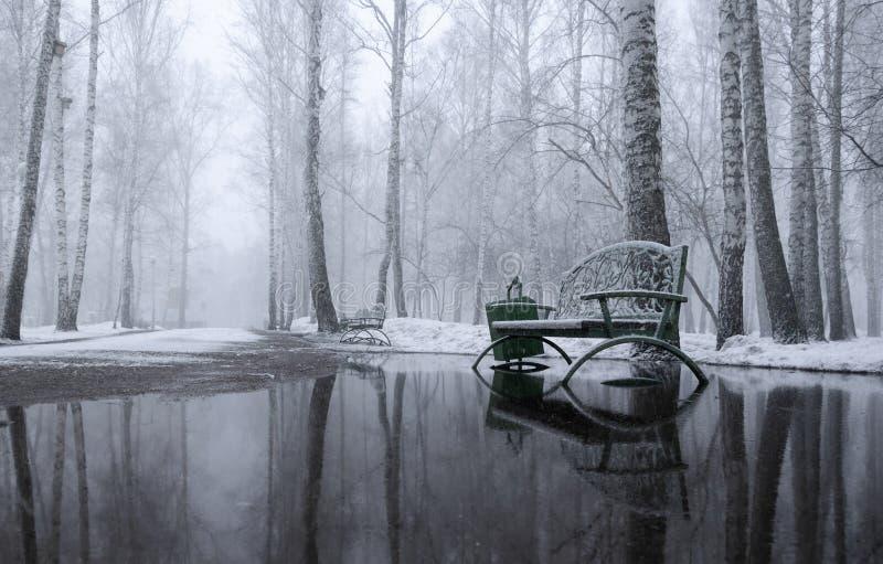 Mattina di Snowy nel parco fotografia stock