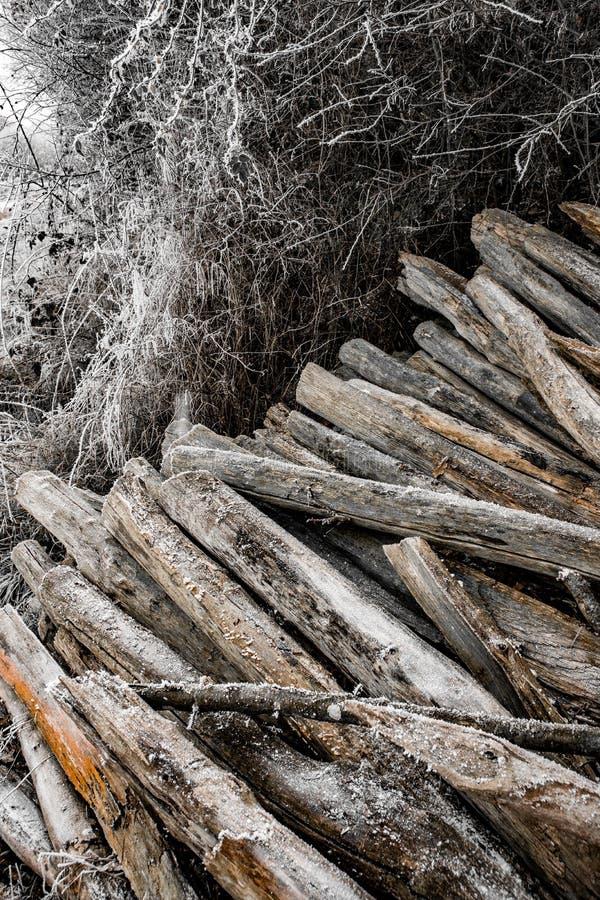 Mattina ghiacciata sulla campagna immagine stock