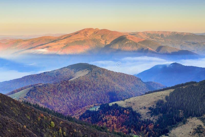 Mattina incredibilmente bella di un'alba nebbiosa di autunno nelle montagne I immagini stock libere da diritti