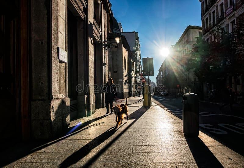Mattina a Madrid fotografia stock